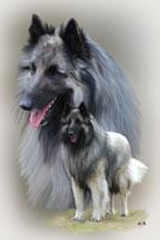 Maltechnik Hunde